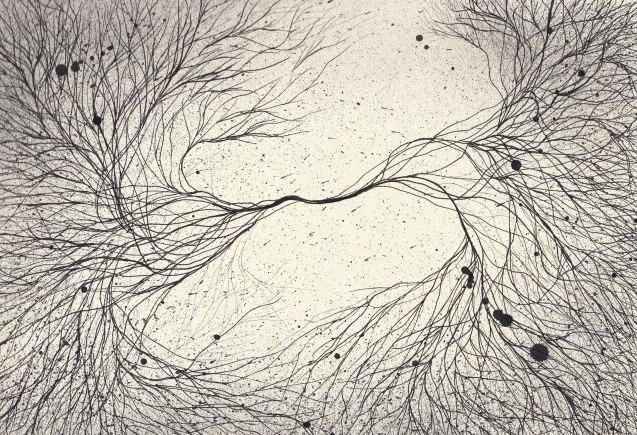 Sinapsis III, 2013. Tinta sobre papel, medidas 22.9 x 30.5 cm.