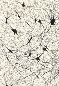 Sinapsis IV,  2013. Tinta sobre papel. 22.9 x 30.5 cm